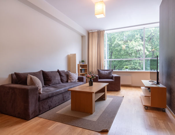 Dream Stay - Cozy Open Bedroom Apartment near Noblessner1