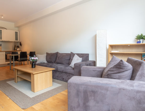 Dream Stay - Cozy Open Bedroom Apartment near Noblessner10