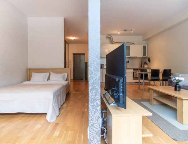 Dream Stay - Cozy Open Bedroom Apartment near Noblessner12