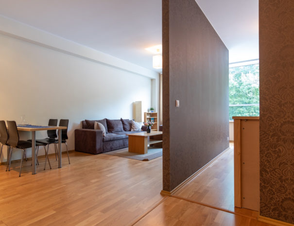 Dream Stay - Cozy Open Bedroom Apartment near Noblessner24