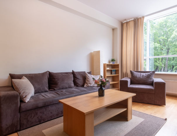 Dream Stay - Cozy Open Bedroom Apartment near Noblessner3