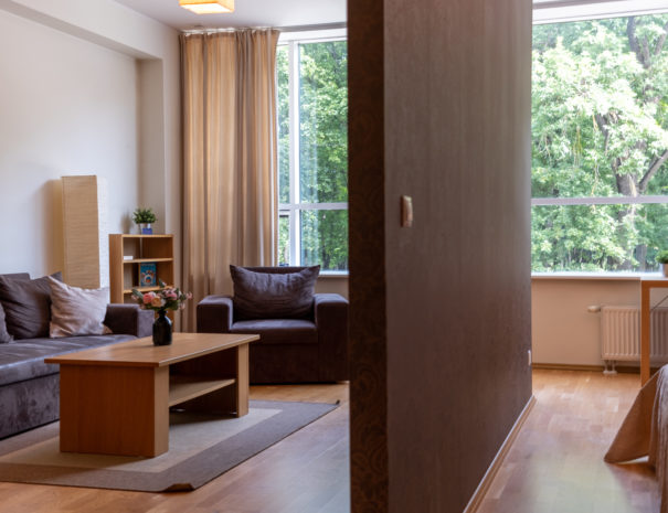Dream Stay - Cozy Open Bedroom Apartment near Noblessner37