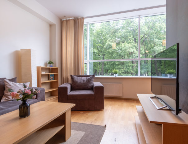 Dream Stay - Cozy Open Bedroom Apartment near Noblessner4