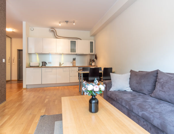 Dream Stay - Cozy Open Bedroom Apartment near Noblessner9